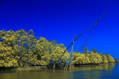 Jaring yang sudah tidak dipakai di kawasan mangrove Batu Karas