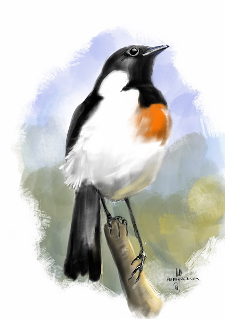 African stonechat bird painting by Artmagenta