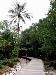 PULAU UBIN, PARAÍSO NATURAL. SINGAPUR