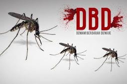 Andi Sudirman Sulaiman Imbau Warga Sulsel Antisipasi Penularan Demam Berdarah Dengue
