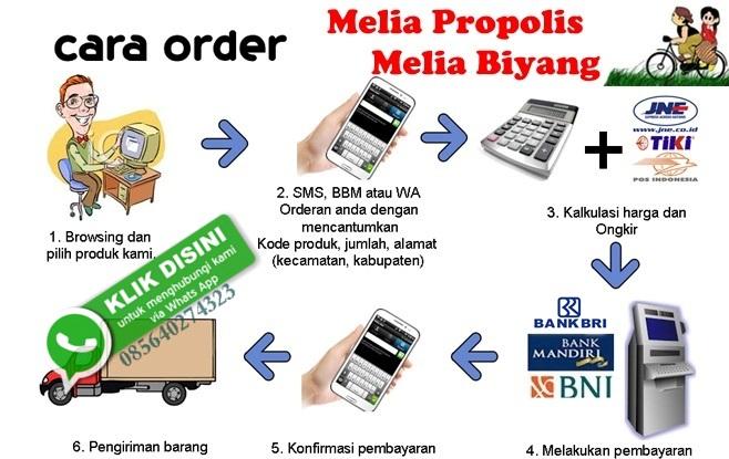 cara-order-melia-propolis-biyang