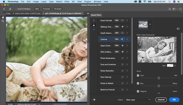 Bức ảnh đã lên màu sau khi chọn mục Colorize