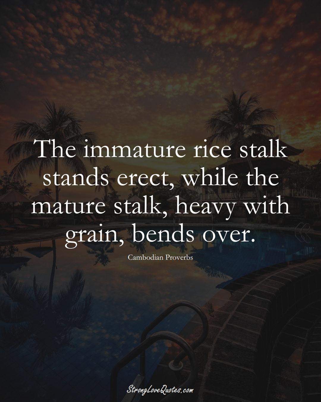 The immature rice stalk stands erect, while the mature stalk, heavy with grain, bends over. (Cambodian Sayings);  #AsianSayings