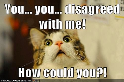 "Meme: shocked cat says, ""You disagreed with me. How could you?"""