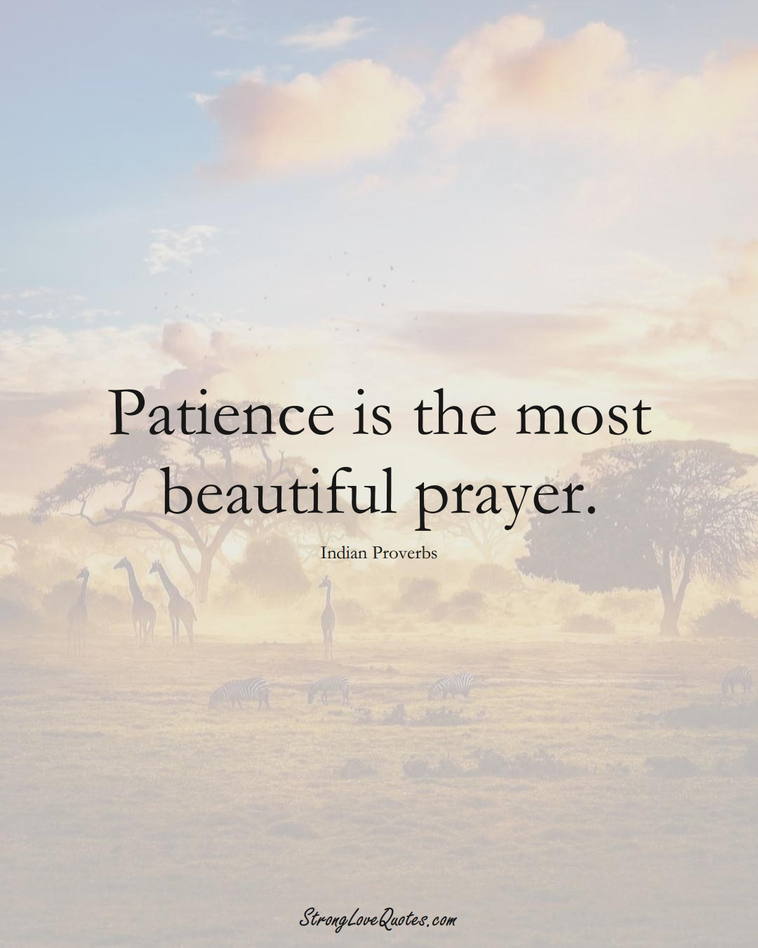 Patience is the most beautiful prayer. (Indian Sayings);  #AsianSayings