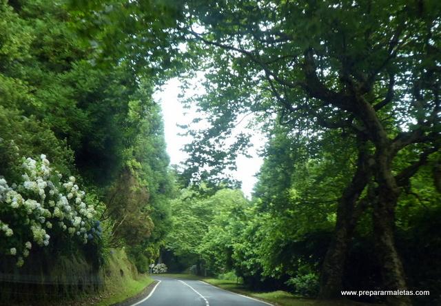 paisaje Azores carreteras