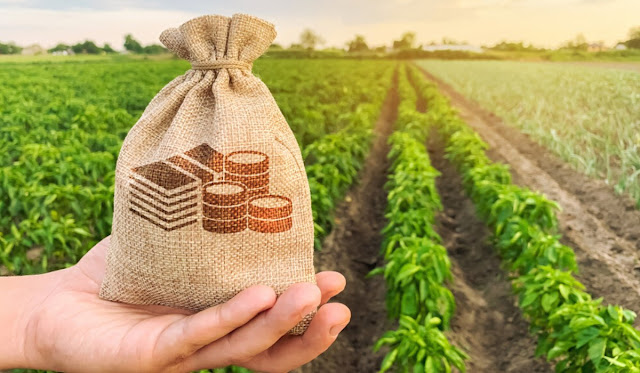 Image of a crop growing and a bag of money