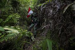 7 Jam baku tembak di Papua, TNI-Polri rebut balik senpi & tewaskan 2 anggota KKB!