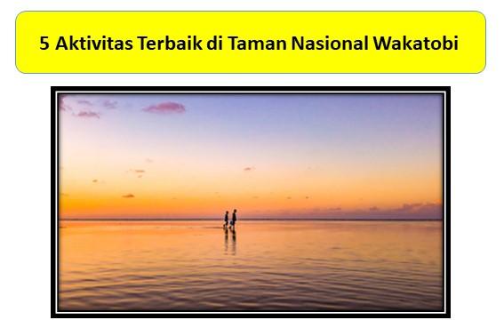 5 Aktivitas Terbaik di Taman Nasional Wakatobi