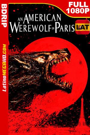 Un hombre lobo americano en París (1997) Latino HD BDRIP 1080P ()