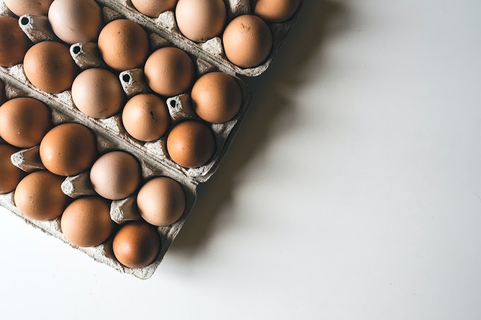 Are Eggs Dairy Products?