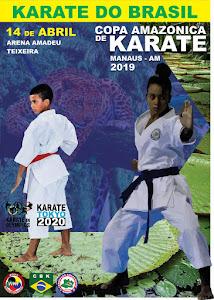 Copa Amazônica de Karate
