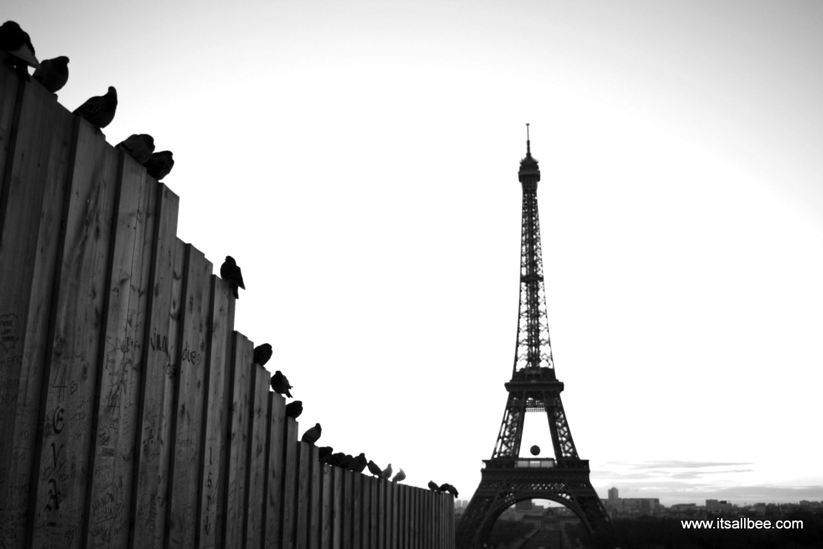 The Eiffel Tower | Paris Noir | Paris Street Views