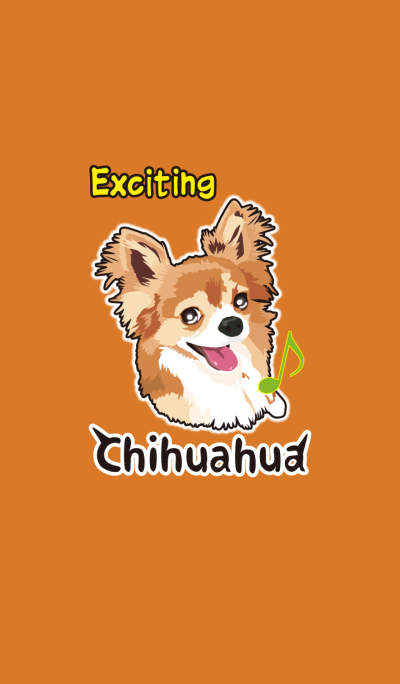 Exciting Chihuahua