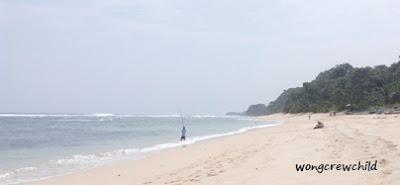 pantai pasir panjang ngliyep malang