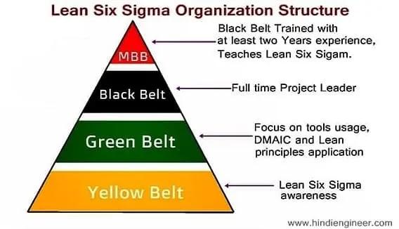 six sigma belts, six sigma belt levels, Lean Six Sigma Organization Structure