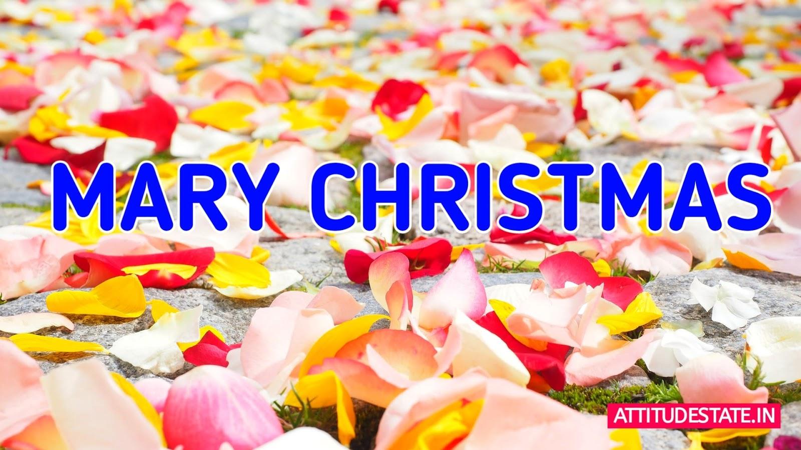 1,000+ Free Merry Christmas & Christmas Images