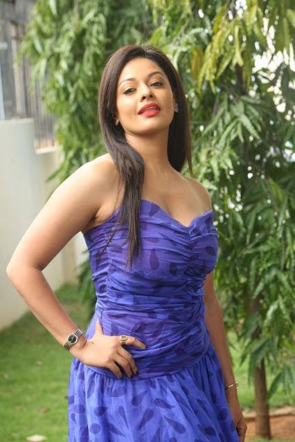 Actress Pooja Kumar Hot Pics in Blue Dress Actress Trend