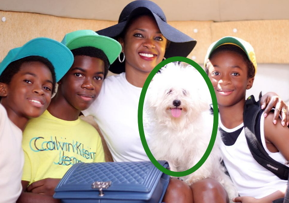 omoni oboli disowns dog in family photo