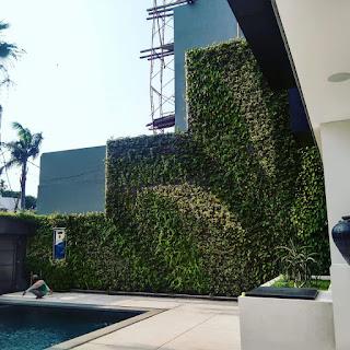 taman vertical garden sidoarjo