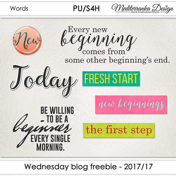 WEDNESDAY BLOG FREEBIE - 2017/17