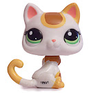 Littlest Pet Shop Blythe Loves Littlest Pet Shop Cat Shorthair (#2108) Pet