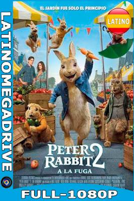 Peter Rabbit 2: Conejo en Fuga (2021) [HDRip 1080P] Latino 2.0 LINE [GoogleDrive] [Mega] DizonHD
