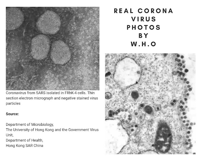 Coronavirus Recommendations