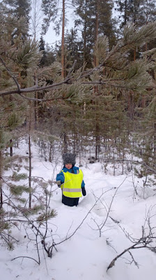 lapsi talvisessa metsässä