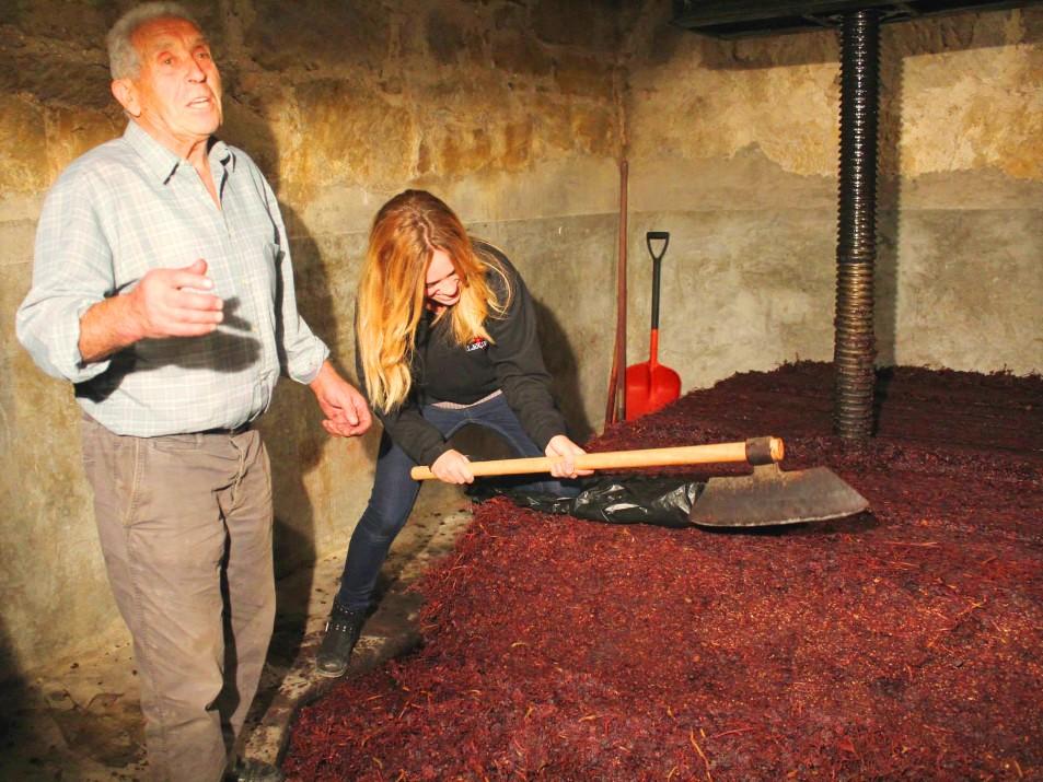 Urbina vinos blog vinos de bodegas lecea en san asensio for Cultivos verticales definicion