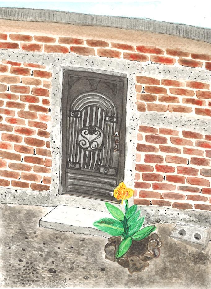 Lo que esconden las flores | Colaboración