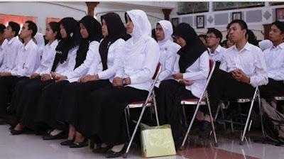 Image result for guru honorer jadi pns