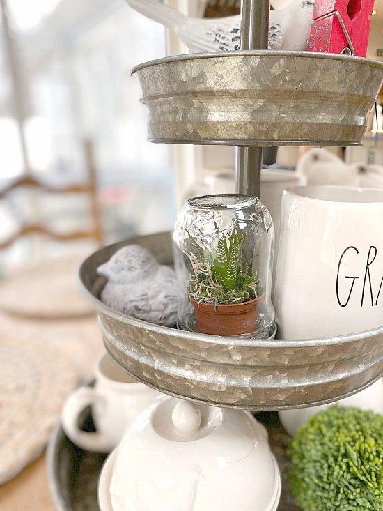 Decorative Recycled jar succulent terrarium