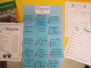 Hippo Day! - First Grade Roars!