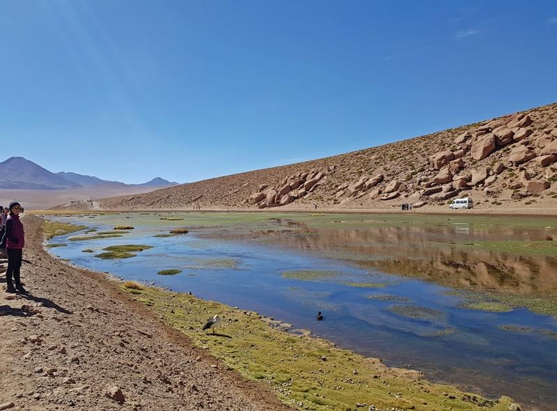 Deserto do Atacama: Passeio ao Geysers del Tatio: Roteiro, valores, dicas