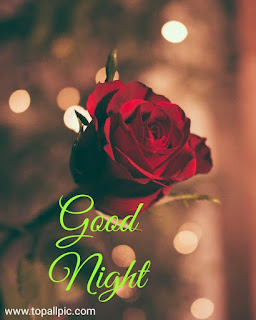 good night sweet dreams images with flowers for friends and family