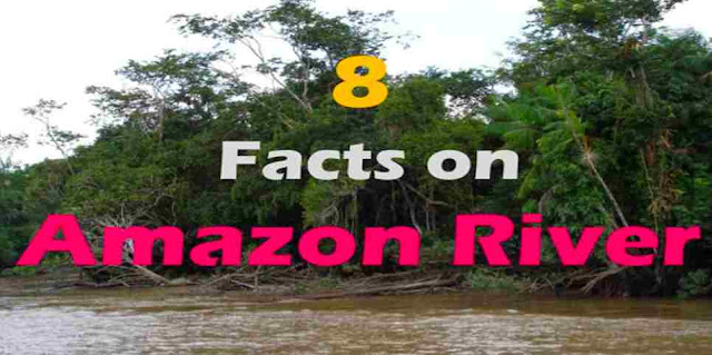 Which is the longest river in South America?