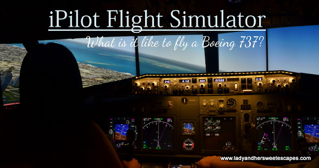 iPilot Dubai Flight Simulator