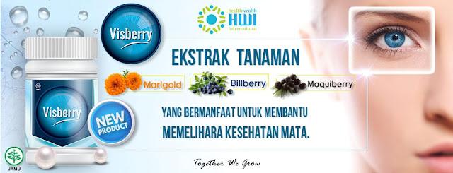 Visberry HWI