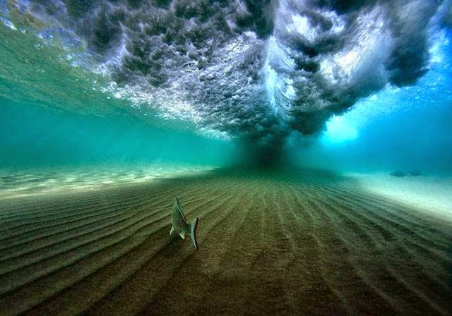 驚心動魄!80張圖片告訴你地球的另一邊長什麼樣?@Rex Wu 的部落格|PChome 個人新聞臺