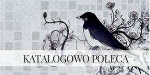 http://noc-polarna.blogspot.com/