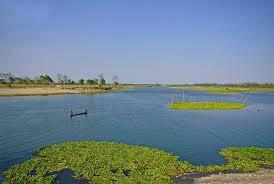 Majuli island, Assam picture