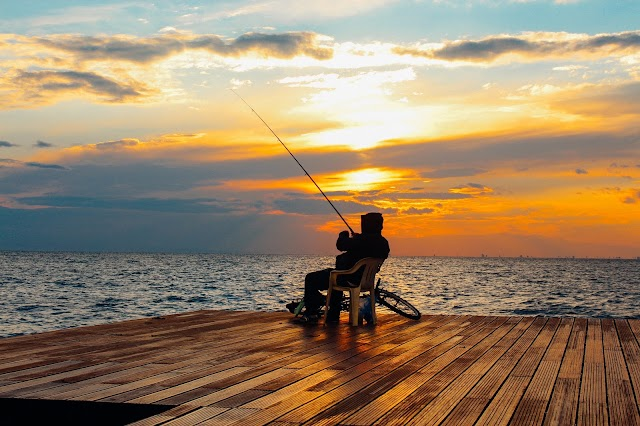 High levels of mercury in Florida's top-level predatory fish