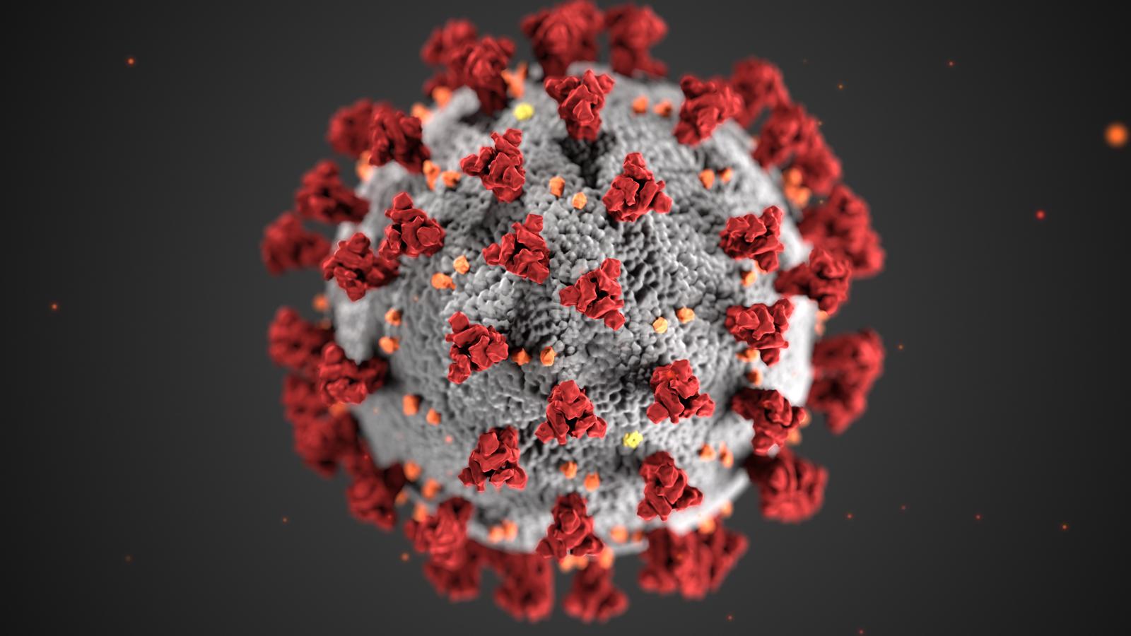 Coronavirus Tips & Caring