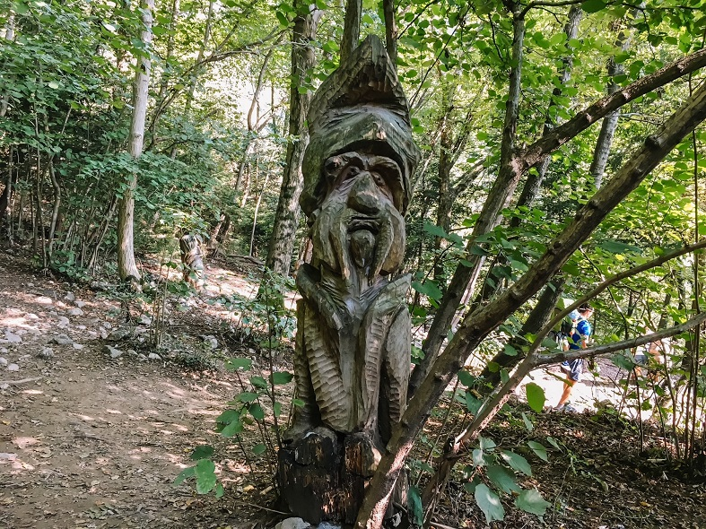 Sentiero dello Spirito del bosco a Canzo