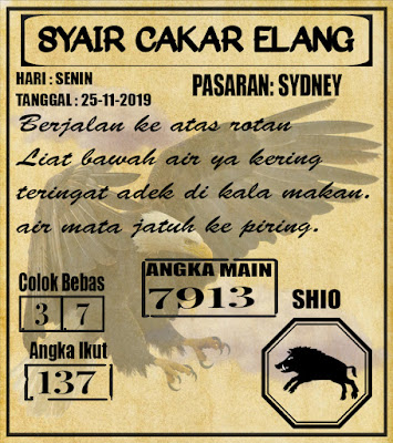 SYAIR SYDNEY 25-11-2019