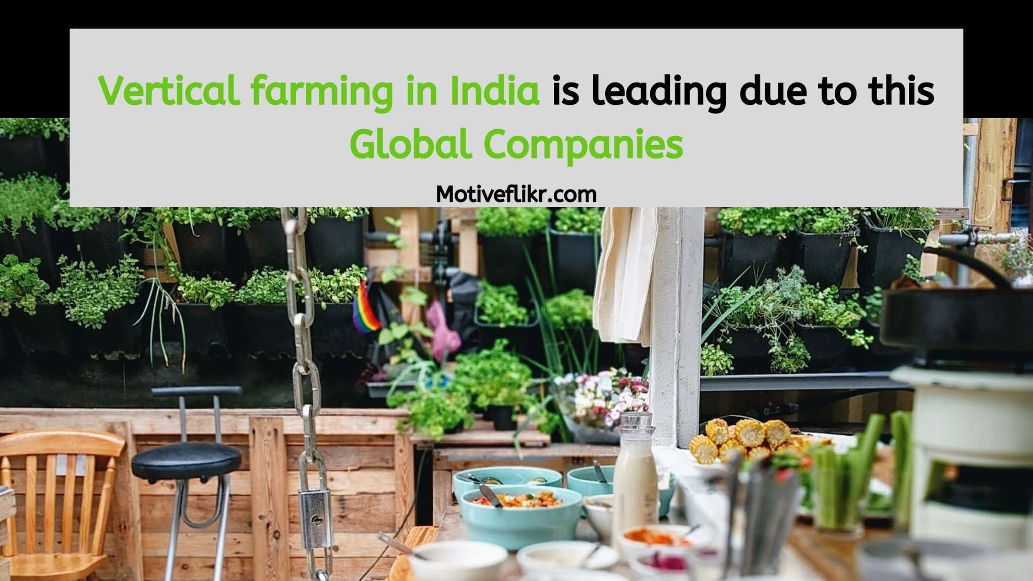 Vertical farming in India is leading due to this Global Companies