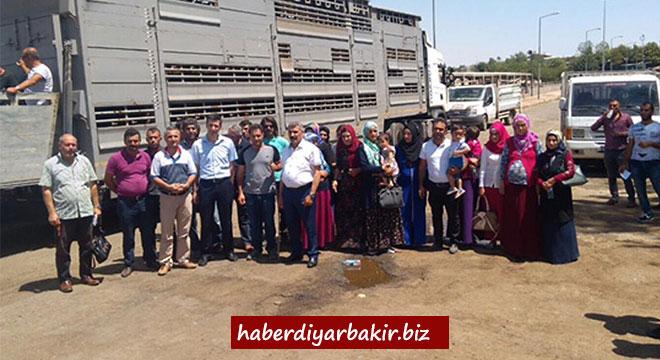 Diyarbakır'da 17 genç çiftçiye 85 manda hibe edildi