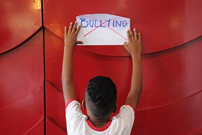 Bullying na Educação de Superdotados