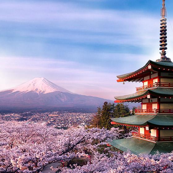 Mount Fuji Wallpaper Engine